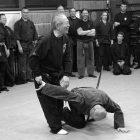 Lezione mensile Ninjutsu Padova – Koppojutsu – il controllo con la struttura ossea
