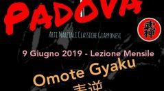 Ninjutsu Padova – Lezione mensile – Omote Gyaku